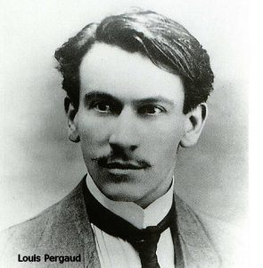 Louis Pergaud